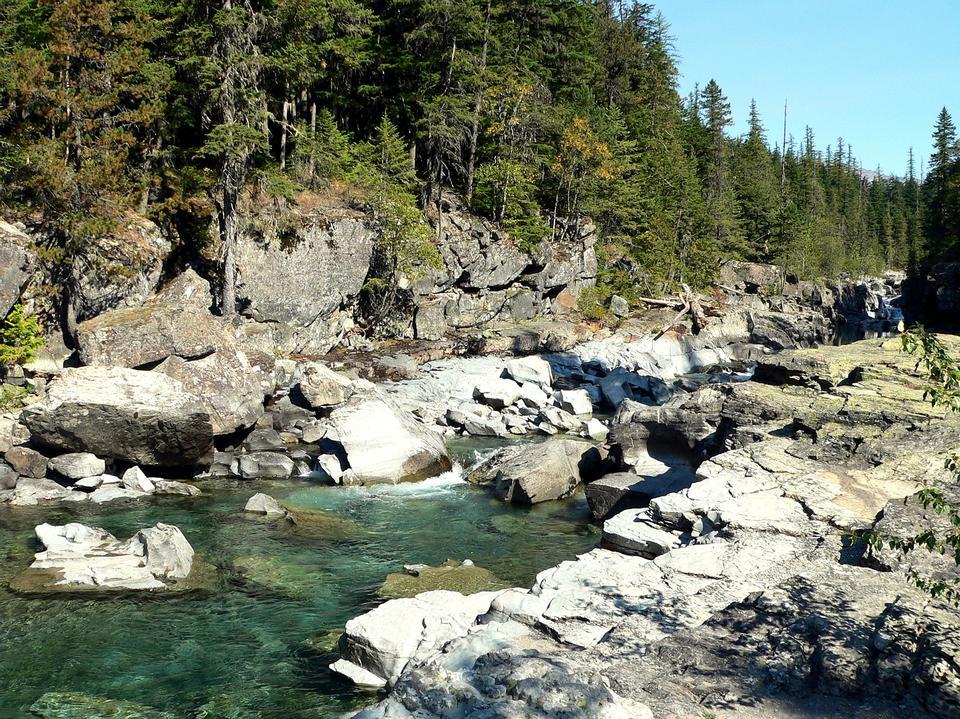 Free Spring Stream Glacier national park Montana