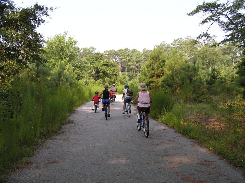 Free Biking on Woodland Trail, Assateague Island, VA