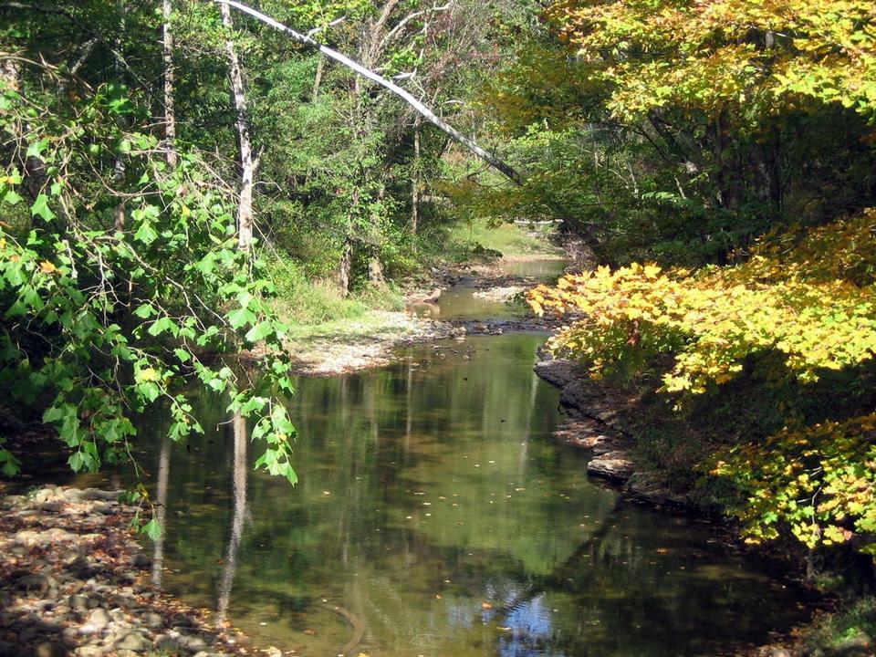Free Bluestone National Scenic River