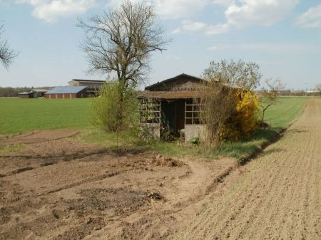 Free Old  tobacco barns in Oftersheim