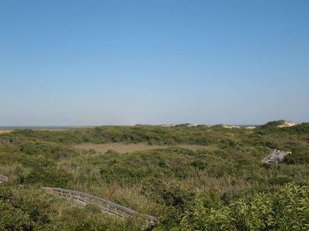Free Watch Hill Nature Trail