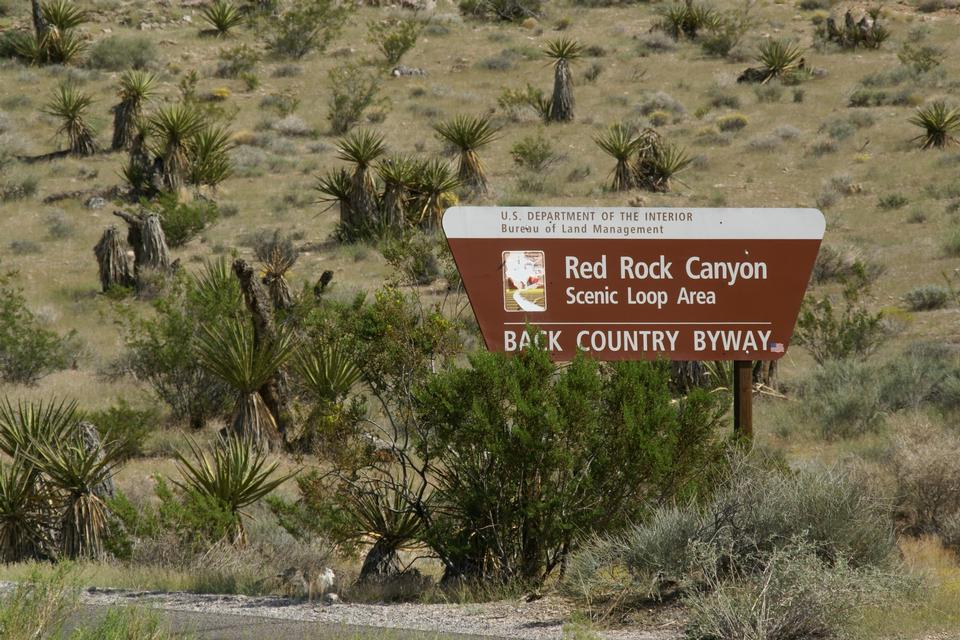 Free Sign for the Red Rock Canyon scenic drive