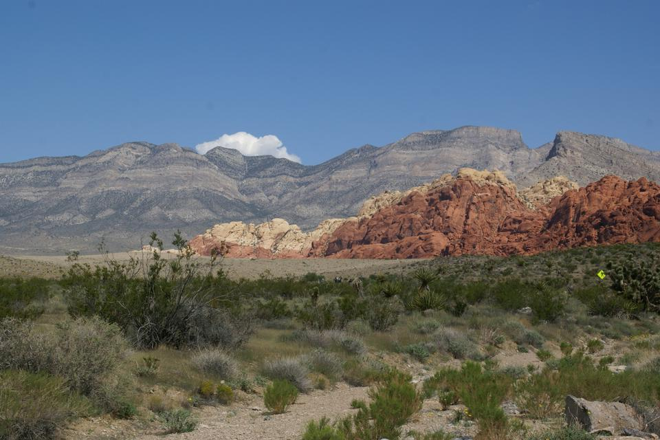 Free Red Rock Canyon scenic drive