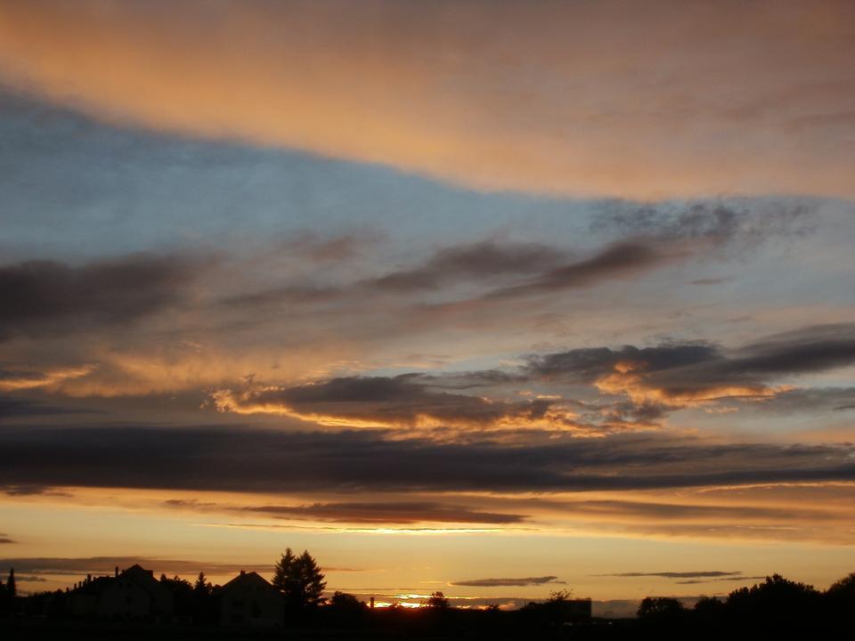 Free Landscape, sunny dawn in a field