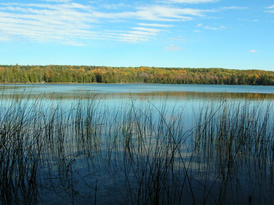 Free Otter Lake from the Platte Plains Trail