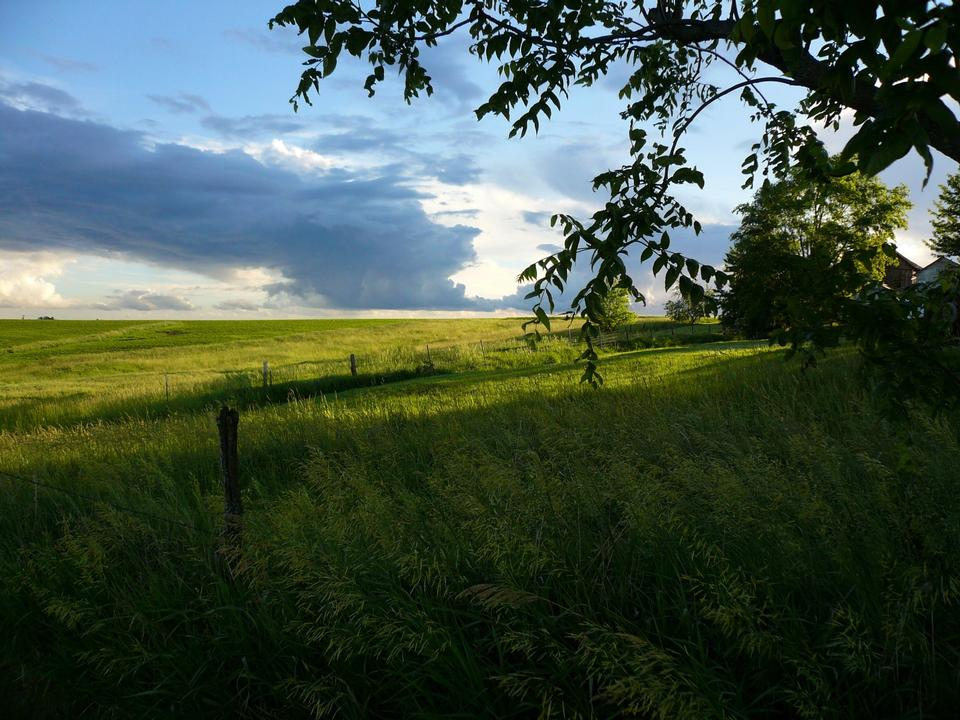 Free Tallgrass Prairie and Storm Clouds