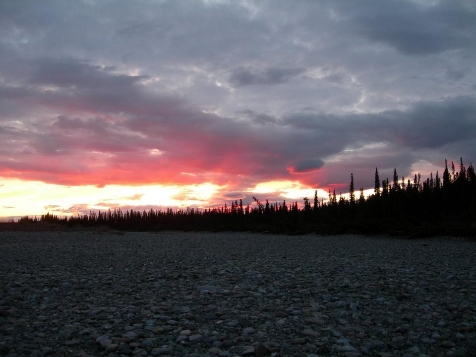 Free sunset silouhettes the trees