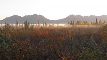 Free Autumn Morning Mist Kobuk Valley National Park