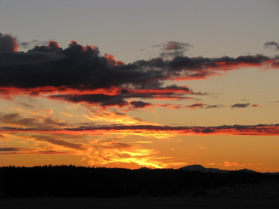 Free Cranes at Sunset