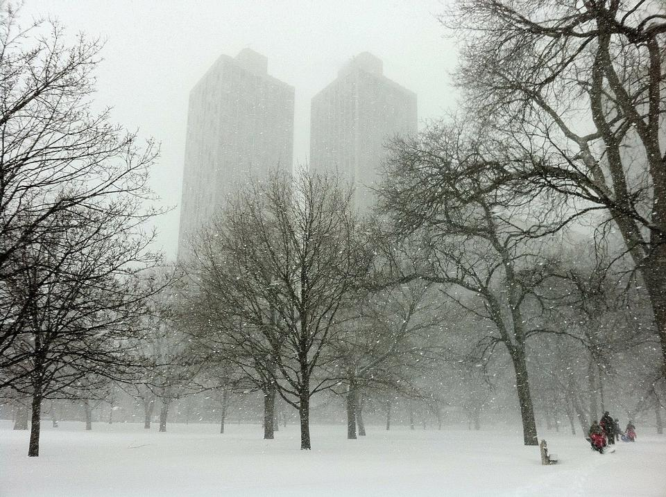 Free landscape park in the fog early morning Chicago
