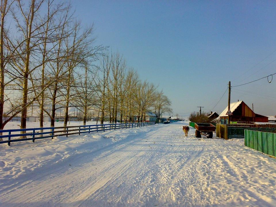 Free Country road covered with snow