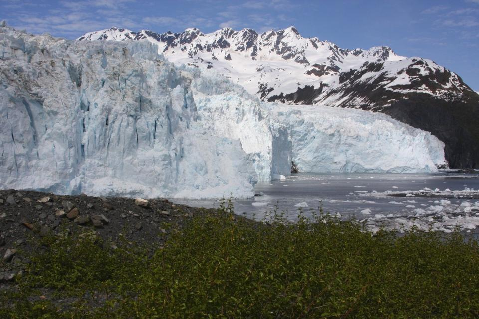 Free Aialik Glacier Kenai Fjords National Park