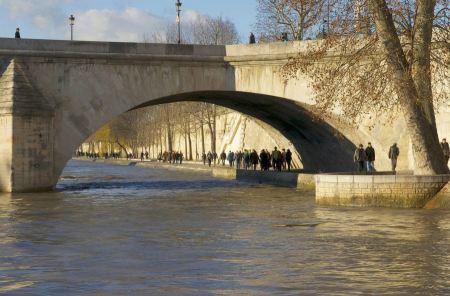 Free cathedral Notre Dame de Paris from under the bridge Petit Pont