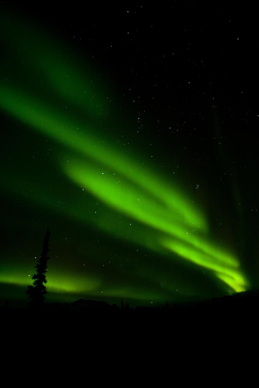 Free A large aurora display