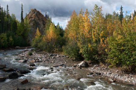 Free McKinley Station Trail- Stormy river