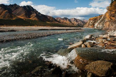 Free Toklat River - Denali National Park