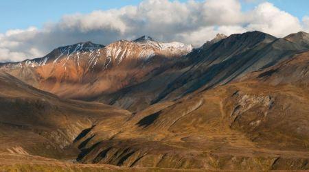 Free Eielson Corridor- Fall Denali National Park