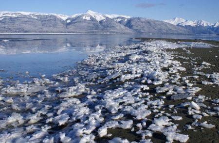 Free Snowy beach in Glacier Bay