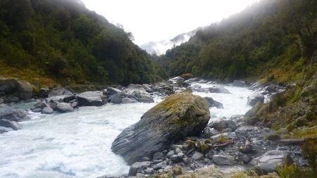 Free Whitcombe River New Zealand