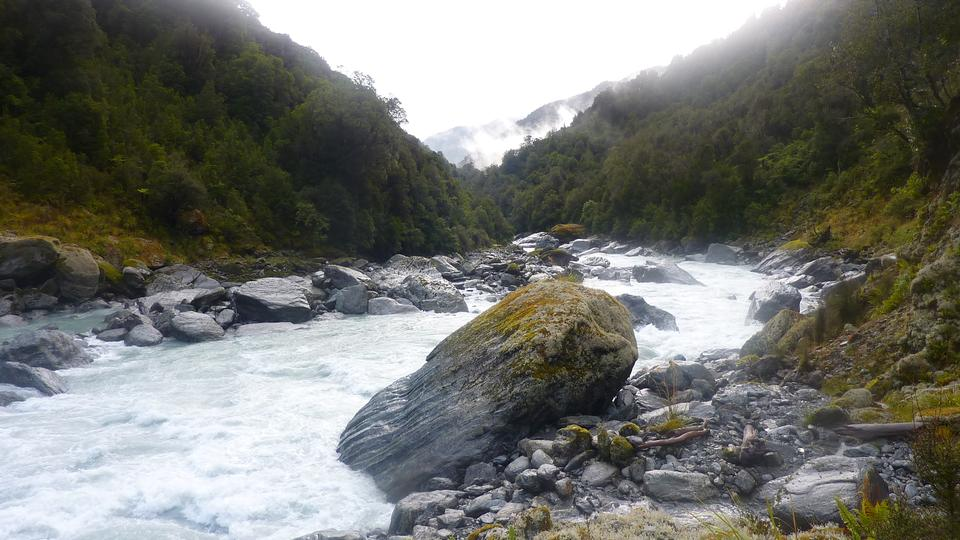 Free Whitcombe River New Zealand