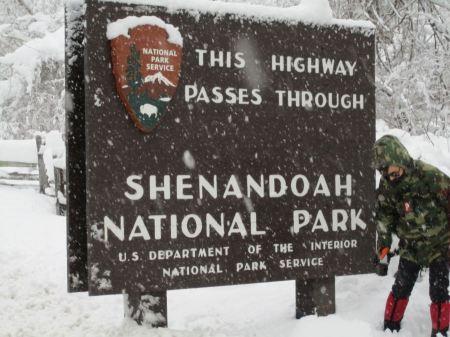 Free Shenandoah National Park Wood Sign Board