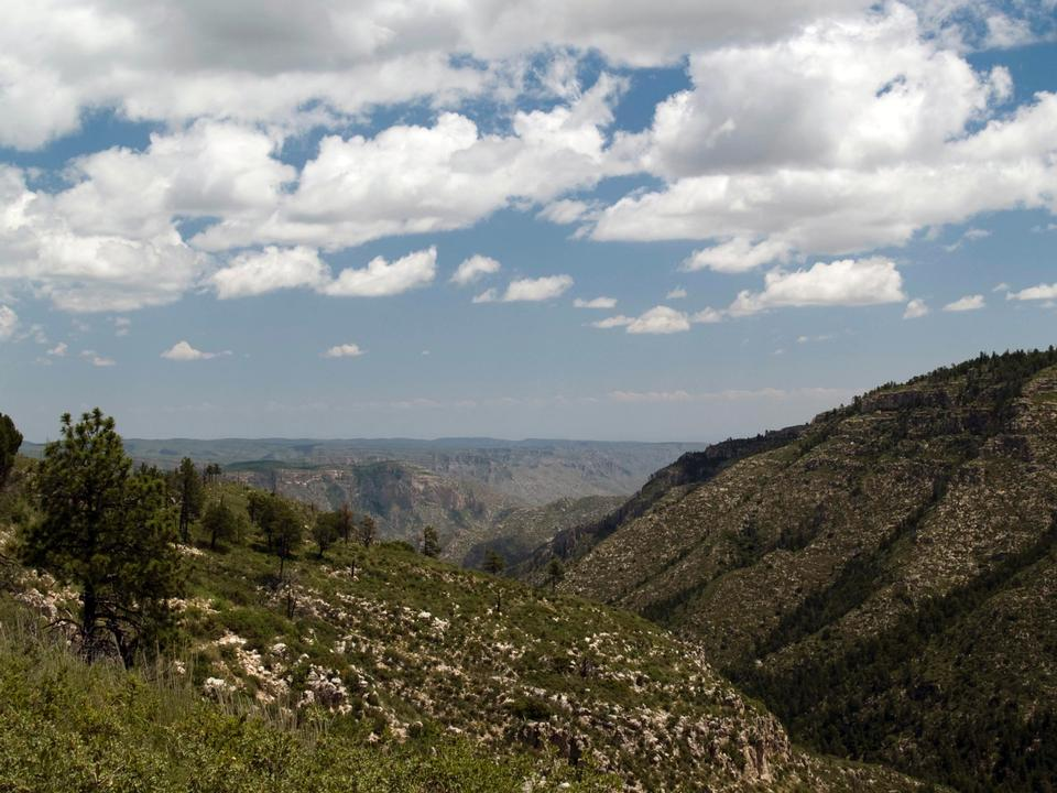 Free The high mesas and ridges of the Guadalupe Mountains