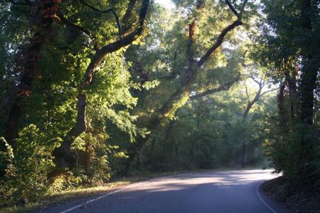 Free autumn landscape of the perimeter road