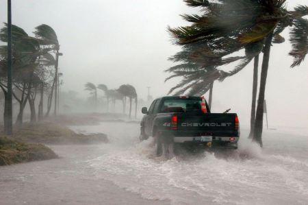 Free Hurricane Dennis Florida