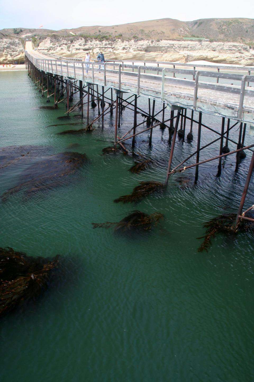 Free The pier of Santa Rosa Island, Channel Islands