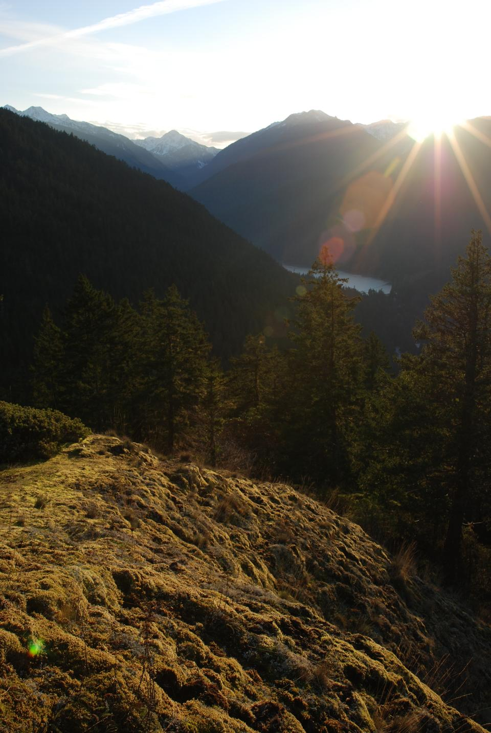 Free Griff Trail, Elwha Valley