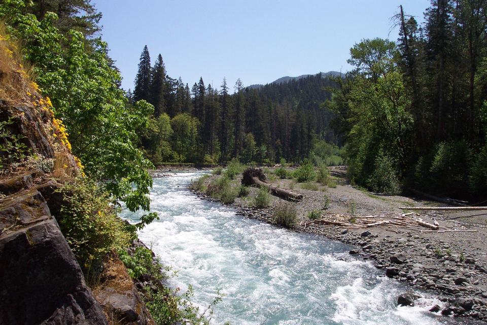 Free Krause Bottom, Elwha River, Olympic National Park