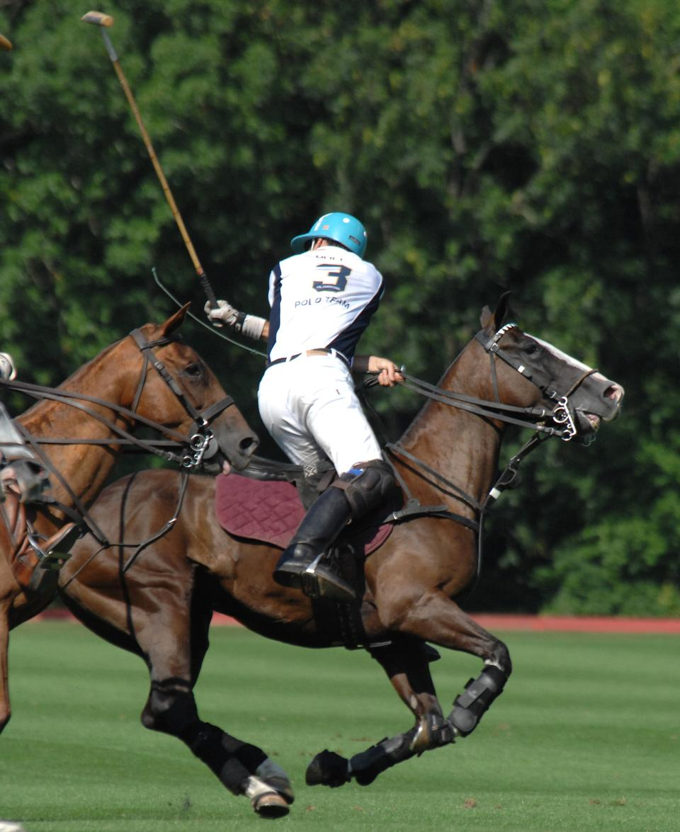 Free A Polo Player hits the Polo ball with a stick