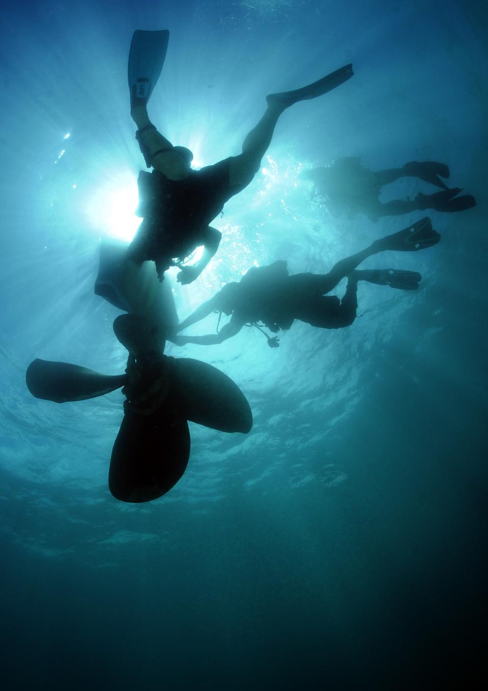 Free Scuba divers in silhouette swimming under water
