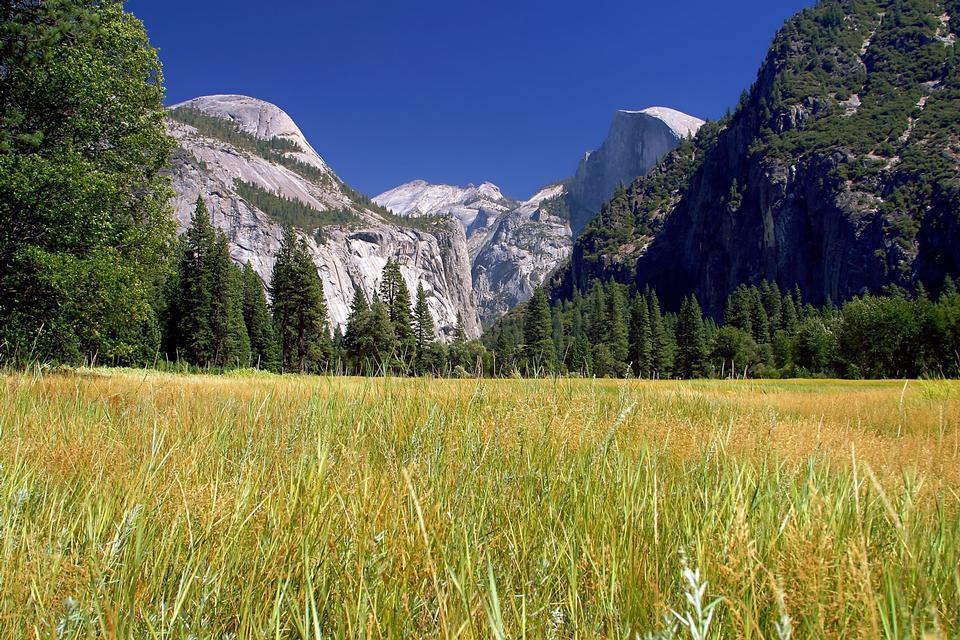 Free Yosemite National Park , California