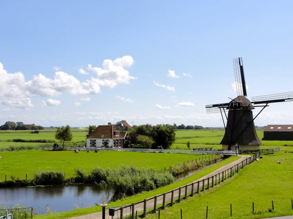 Free Traditional Dutch windmills