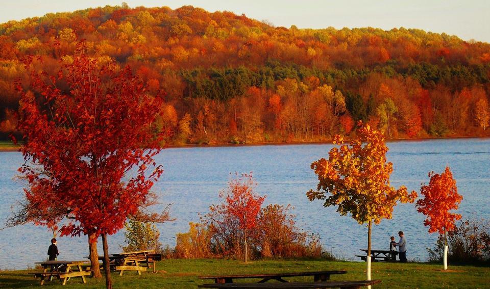 Free Autumn colorful foliage over lake
