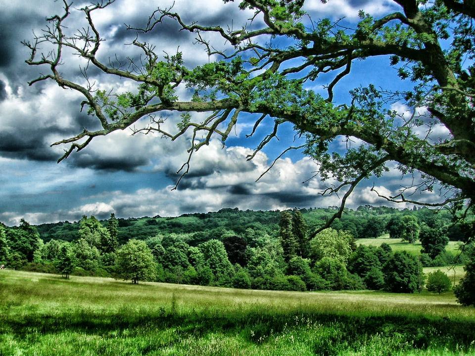 Free Landscape Kent England