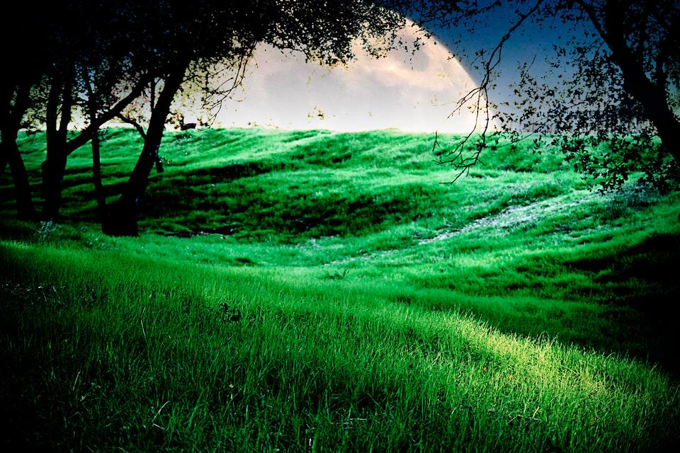 Free A green meadow with a moon