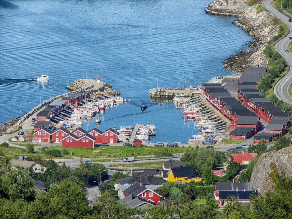 Free Beautiful Harbor Bodo Norway