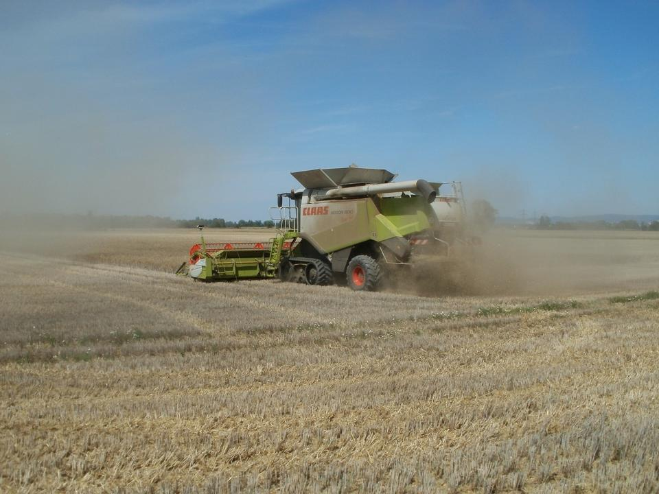 Free Machine harvesting the corn field