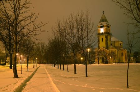 Free Winter park in the evening covered with snow with a row of lamps