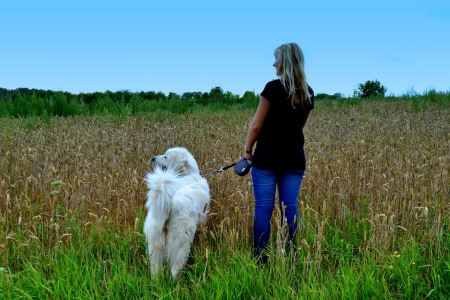Free Elegant woman walking her big dog in the field