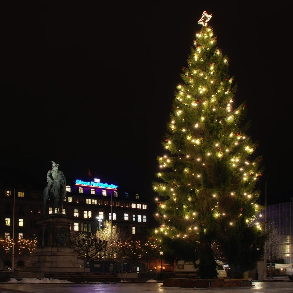Free Christmas Tree Malmo Sweden
