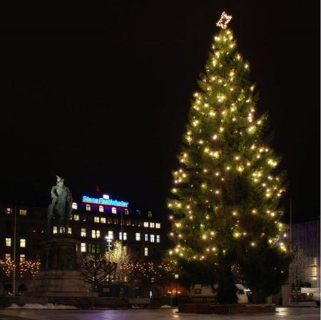 Free Christmas Tree Malmo Sweden