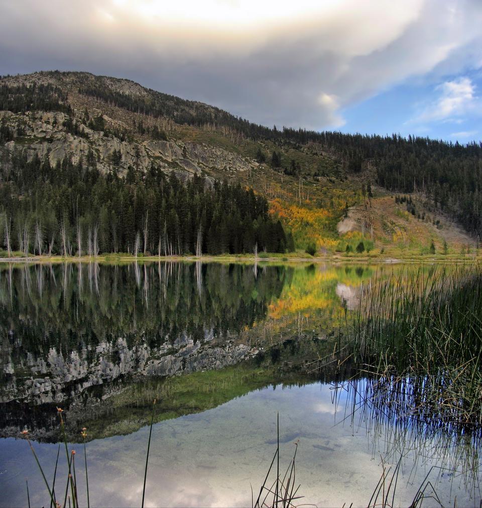 Free Scotcher Lake Reflections California