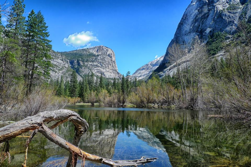 Free Lake Mirror Reflection Yosemite National Park