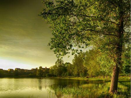 Free Lake Reflections  Poland  Autumn