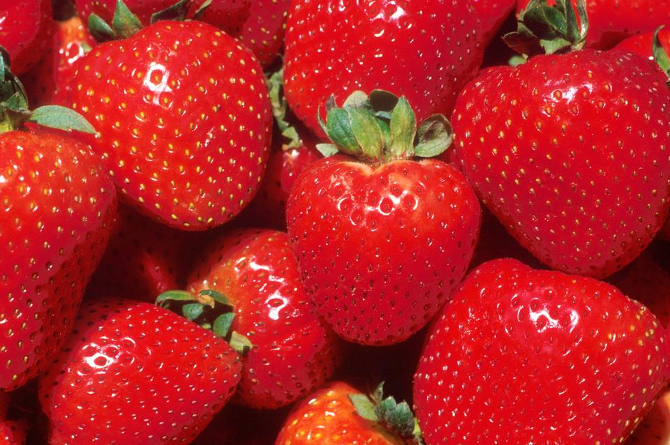 Free Close-up Of Red Strawberries