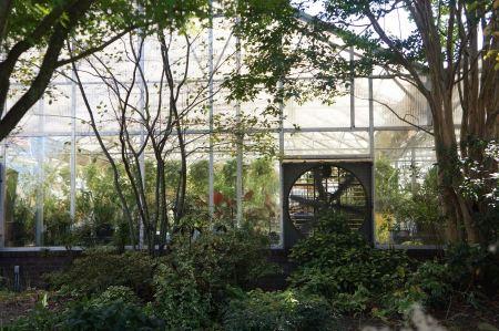 Free Garden greenhouse