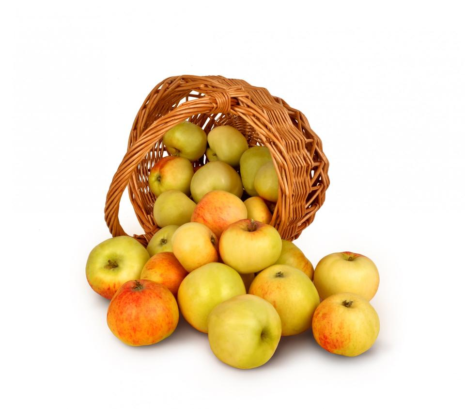 Free Basket Of Apples
